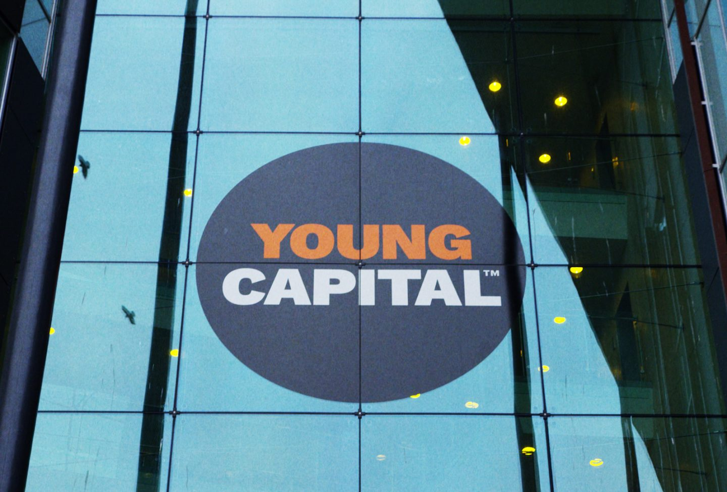 YoungCapital: 'This Was Our Smoothest IT Project Ever'